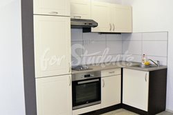 Spacious one bedroom apartment close to Brno centre - kuchyn