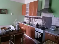Cheap one bedroom apartment near to Faculty of Medicine - Kuchyne-1
