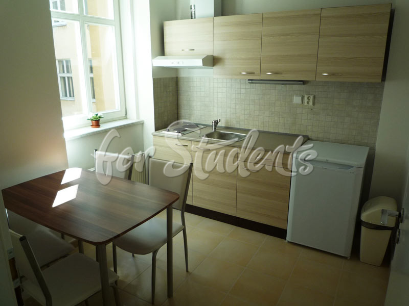 Studio apartment in the city centre