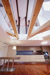 Luxurious two bedroom loft apartment - kuchyn