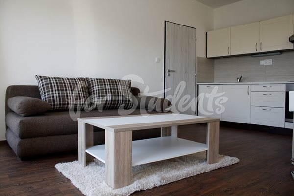 Nice one bedroom apartment, Brno - B83/19