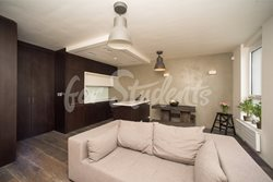 Luxurious one bedroom apartment - MIL_4386