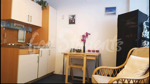 Private studio apartment in a great location, Prague 3 - P14/21