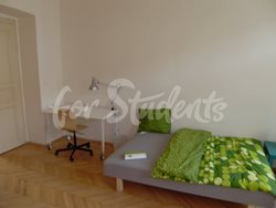 Spacious 3bedroom apartment in Prague 2 - P2010175