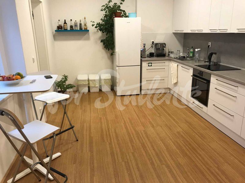 Three/Four bedroom apartment in New Town, Hradec Králové (file 79808766_551309635709299_7978118317455966208_n.jpg)
