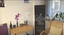 Private studio apartment in a great location, Prague 3 - 20200316_094107