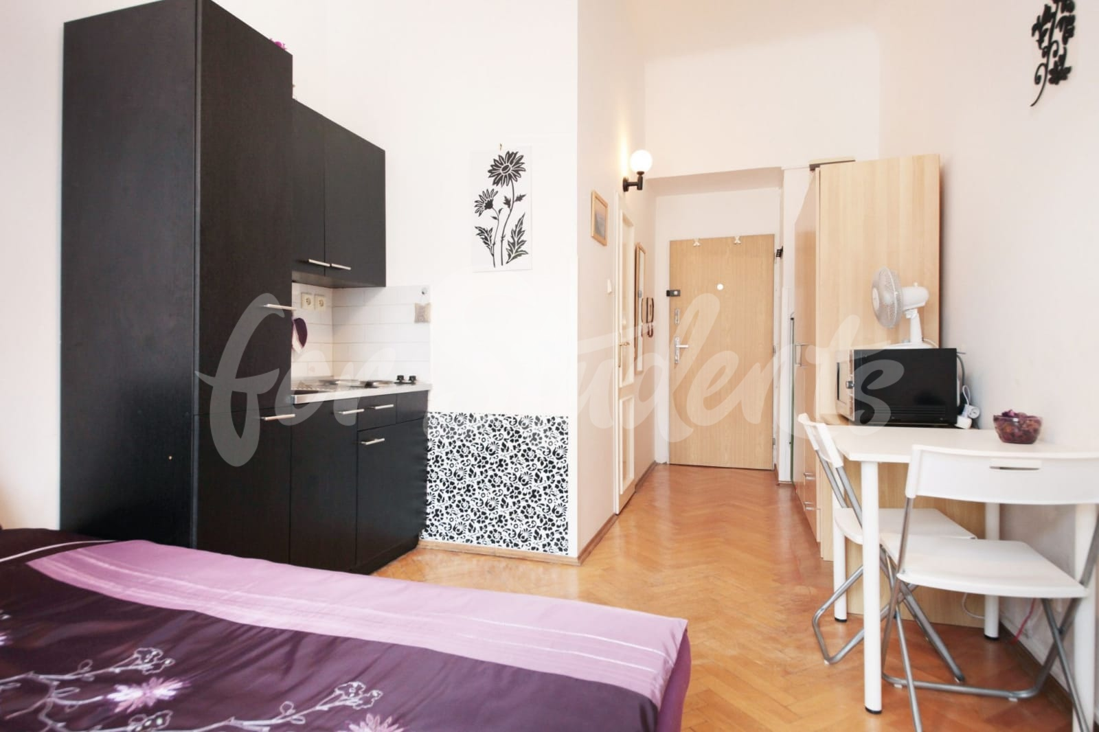 Studio apartment in Prague 2