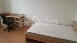 New spacious one bedroom apartment next to Atrium in new student´s residence - 38736467_484961288632969_6691778322428329984_n