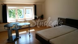 Spacious one bedroom apartment in New Town, Hradec Králové - 425