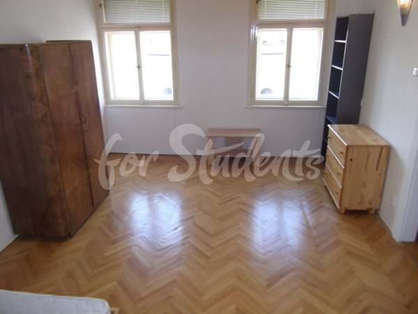 One bedroom flat in Řipská - P145