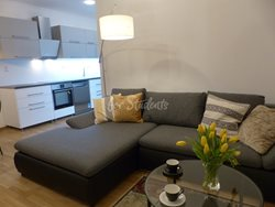 Two bedroom apartment for rent in Dejvice - P1020143