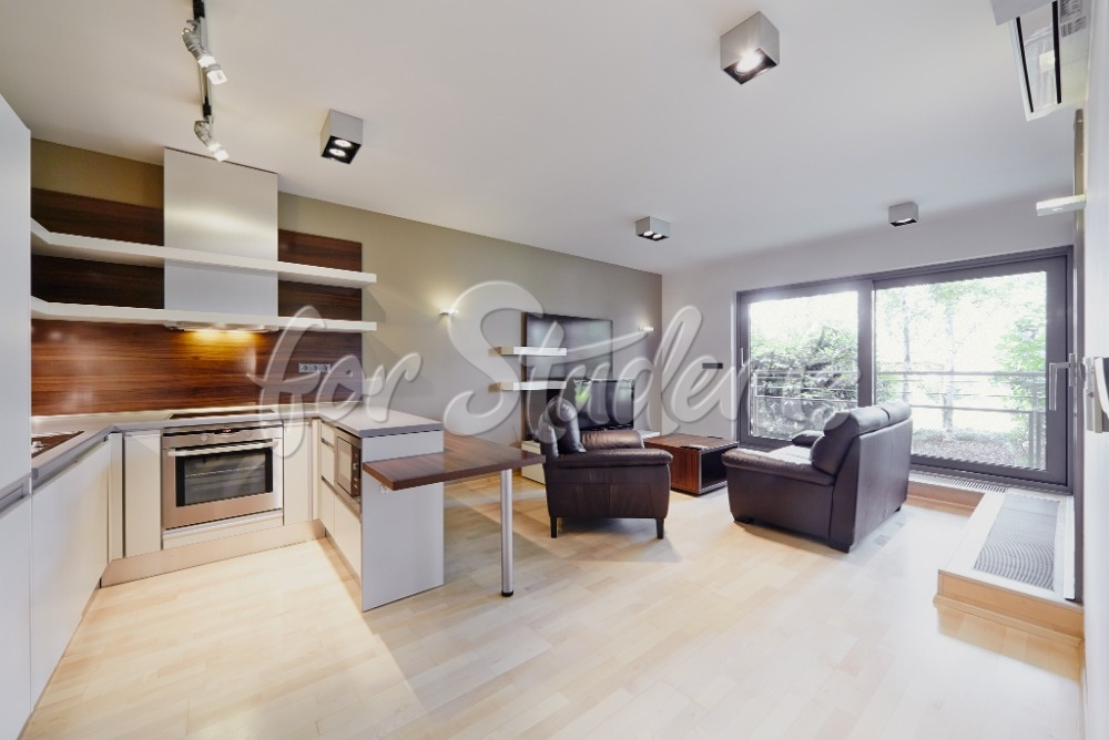 Luxurious two bedroom apartment with terrace