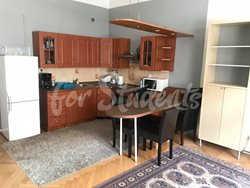 One bedroom apartment in the New Town, Hradec Králové - 97061914_2880241732087125_6076845301786738688_n
