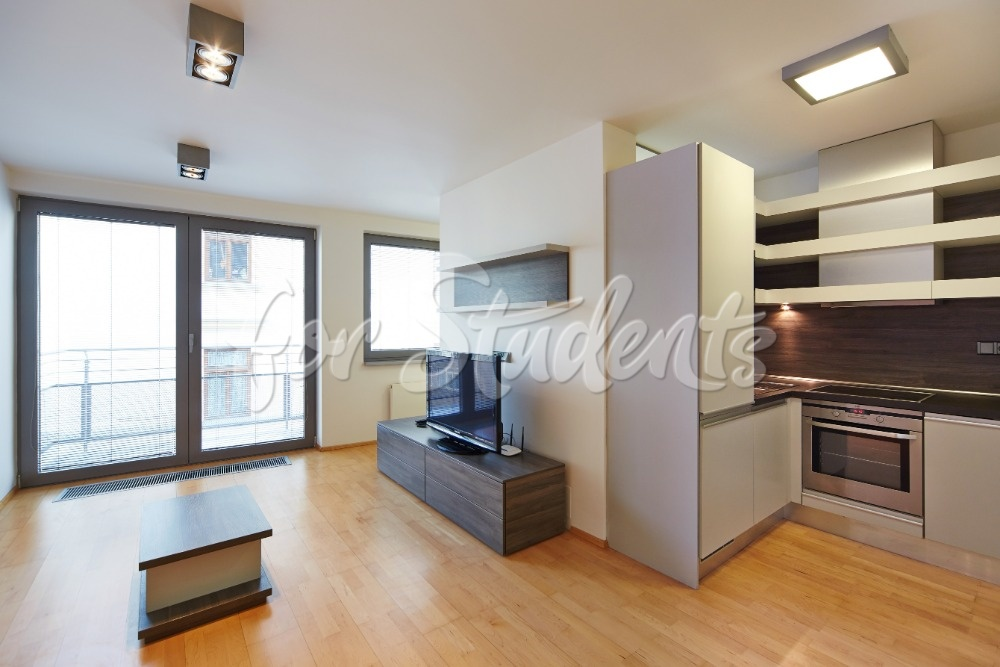 Very nice studio apartment in the centre of Brno