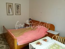 Cheap one bedroom apartment near to Faculty of Medicine - Loznice-3