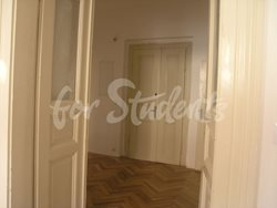 Spacious 3bedroom apartment in Prague 2 - predsin
