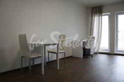 One bedroom apartment with a big balcony - obyvak3
