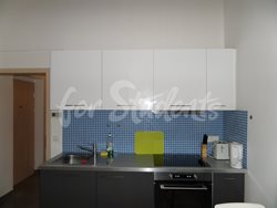 Luxury one bedroom apartment in the center with garden - SAM_2065
