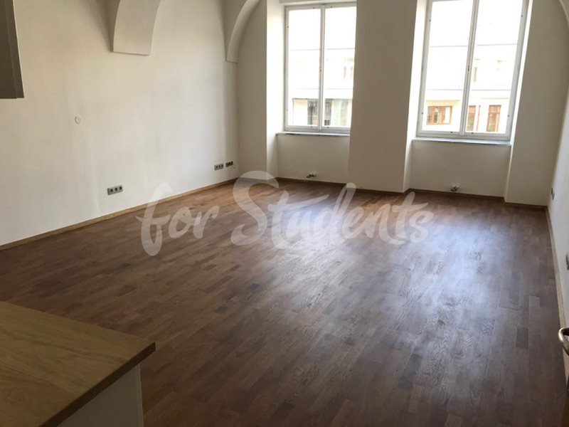 Studio apartment in the Old Town (file 70109990_486786355494965_6367893464247435264_n.jpg)