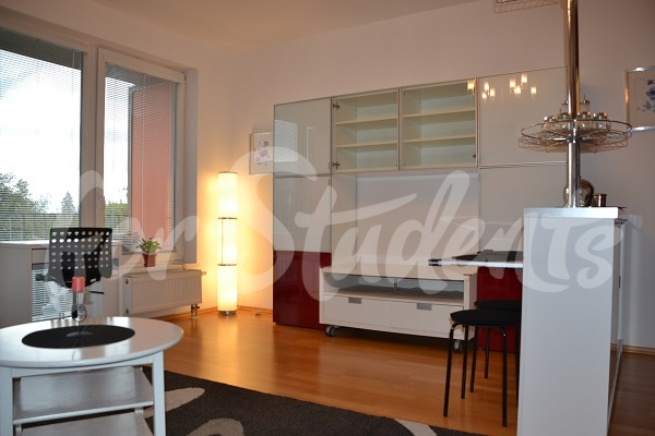 Spacious and modern studio apartment, Prague (file living-room-with-kitchen.jpg)