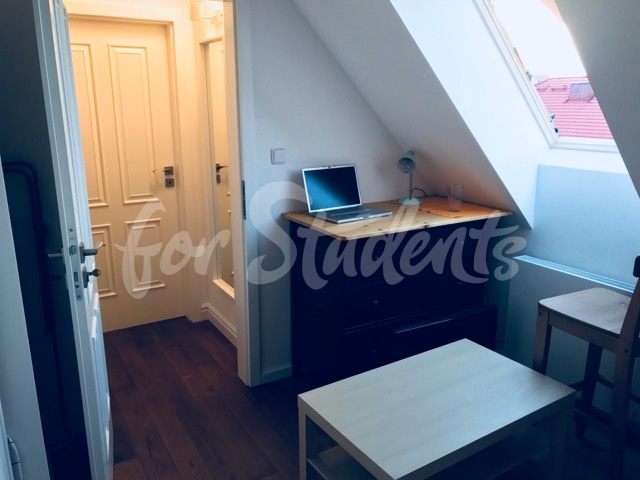 One room in luxurious Two bedroom apartment, Prague