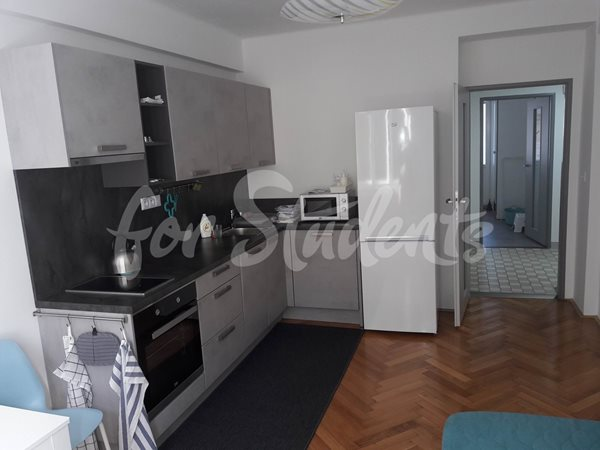 One bedroom apartment 2 minutes from Faculty of Medicine - 79/19