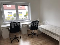 One bed available in a female shared room, Hradec Králové - 70698831_240868703505041_5892185854364876800_n