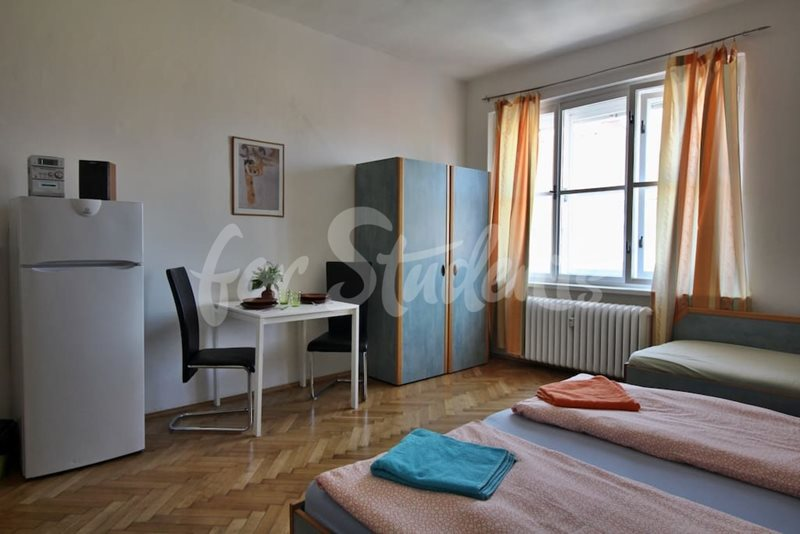 Spacious studio apartment in Prague 4 (file 08f22cdc-e5fa-4e5a-ab34-8b4f1551b781.jpg)