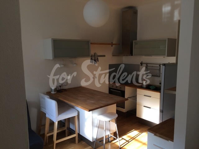 One bedroom apartment near the First Faculty of Medicine, Prague