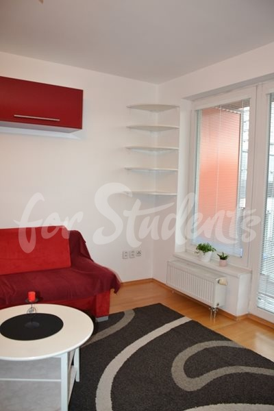 Spacious and modern studio apartment, Prague (file living-room-II.jpg)