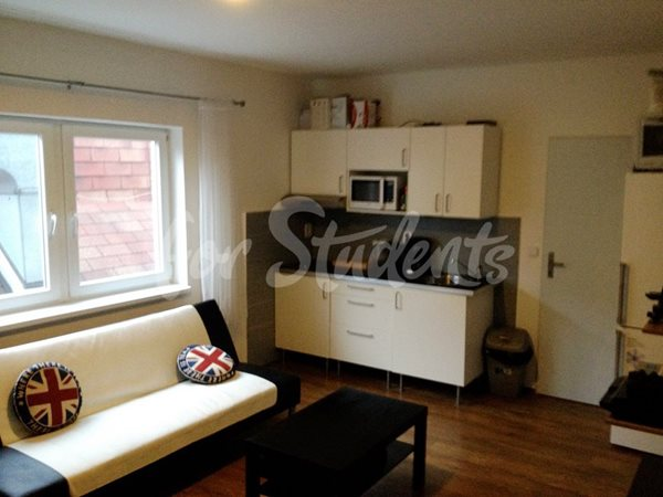 One bedroom apartment available in Old town - 26/18