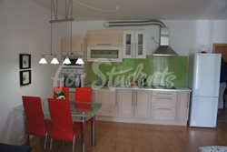 Studio apartment near Old Town for sale, Hradec Králové - DSC03001
