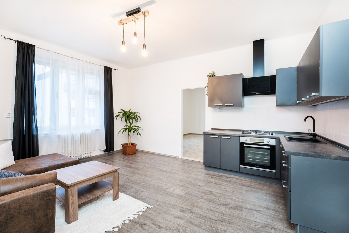 Bright and spacious one bedroom apartment, Hradec Králové