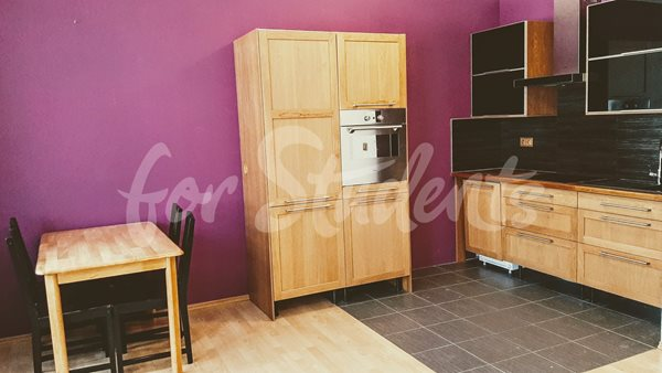 One bedroom apartement in Prague 5, Motol - P18/19