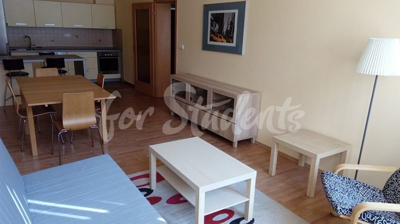 One bedroom apartment in the Old Town (file 27459076_1696775417052616_408735937623617474_n.jpg)