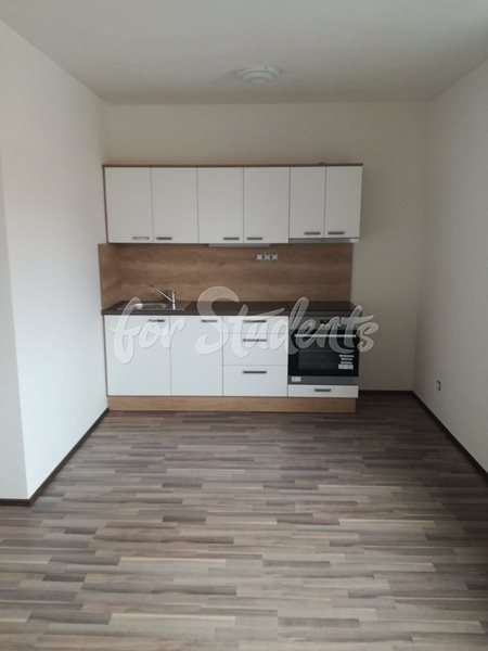 Nice studio apartment - B36/19