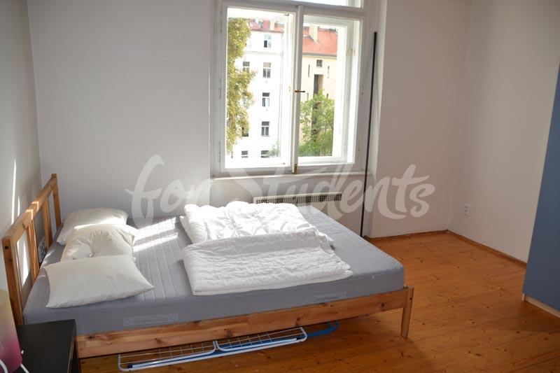Studio flat in Prague 2