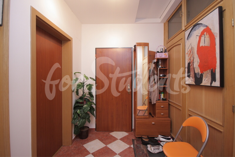 Luxurious studio apartment in Prague 2 - Šafaříkova street