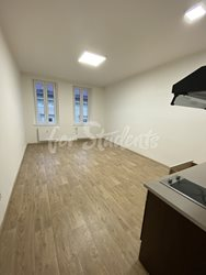 New Bright and spacious studio apartment close to Brno city centre  - 405Ac