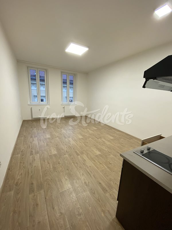 New Bright and spacious studio apartment close to Brno city centre  (file 405Ac.jpg)