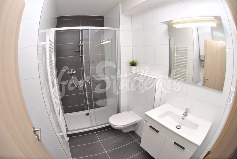 Spacious one bedroom apartment with balcony (file koupelna.jpg)