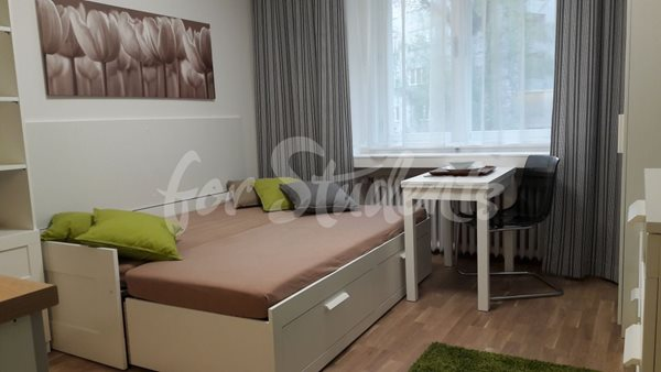 Modern studio apartment close to Old Town, Hradec Králové - 102/20