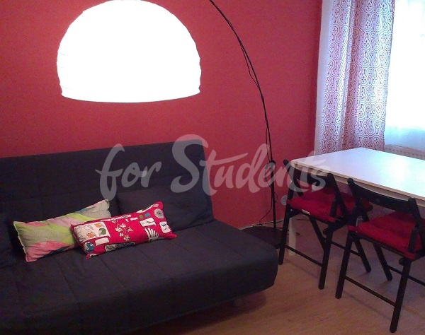 - One bedroom flat in Prague 2 - Kateřinská street