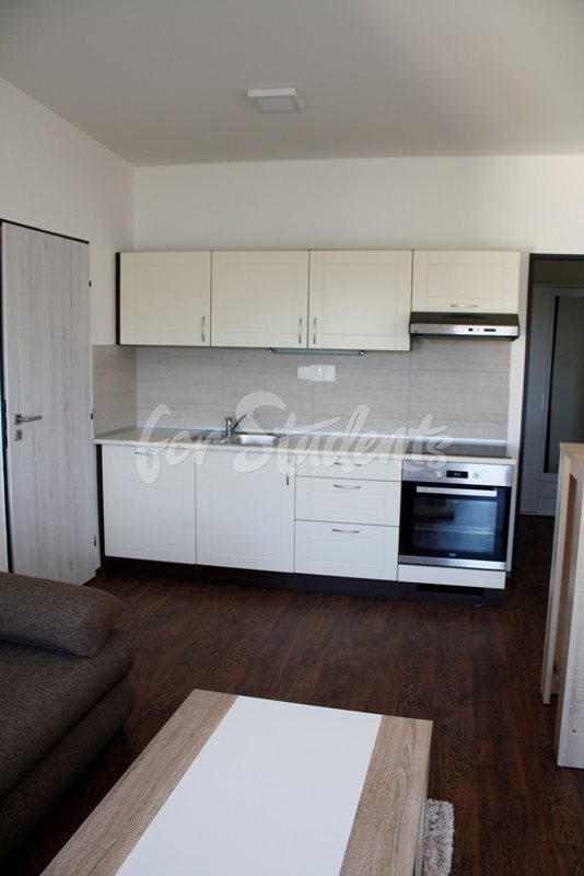 Nice one bedroom apartment, Brno (file 602B3.jpg)