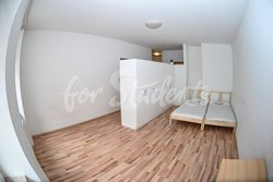 Room in a shared apartment - pruchozi_pokoj