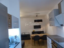 Two bedroom apartment for rent in Dejvice - P1020137