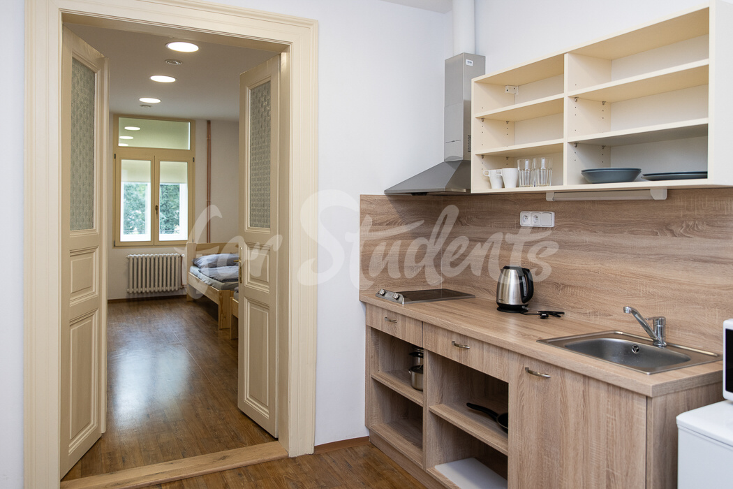 Double rooms with shared kitchen and bathroom in Plzeňská Campus, Prague